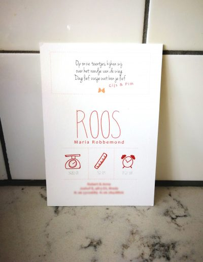 Roos (achter)
